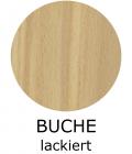 06-buche-lackiertD74A6940-6E3C-96FF-7329-5508CDDE614A.png